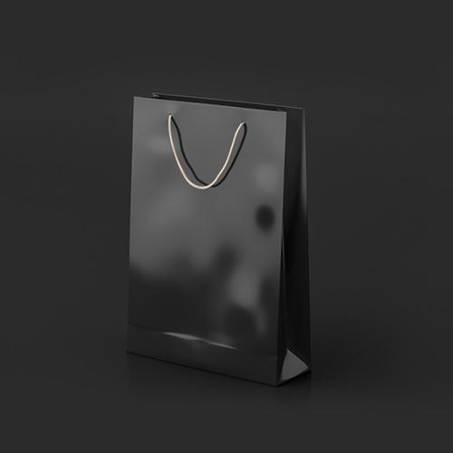 Luxury Laminated Bags