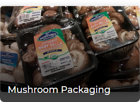 Screenshot_2020-09-04 Flexible Packaging – AeroPlast(3)